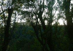 "view on fantastic castle ""convento di Tomar""; DO VISIT IT !!!"