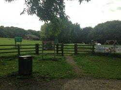 Flatts Lane Woodland Country Park