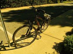 Anderson's Bike Rentals
