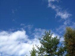 Blue skies and autumn sun