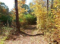 Cedar Glades