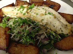 red snapper served on leafy green salad served with hand cut potato wedges