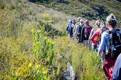 Green Mountain Trail
