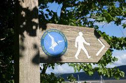 Anglesey Coastal path walk