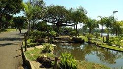 Parque do Sabia