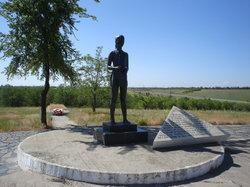 Soldiers Field Memorial