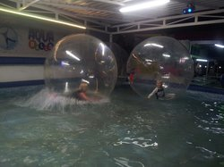 Speedball Zorbing