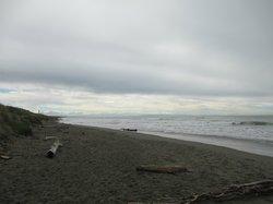 Waimairi Beach