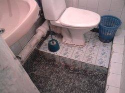 туалет+душ в одном