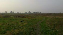 Milton Creek Country Park