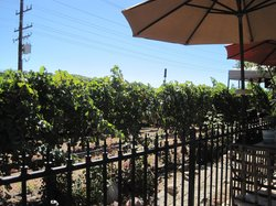 Baily Wine Country Cafe