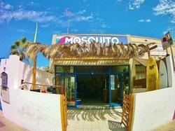 Mosquito Surf
