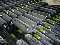 Vendimia Wine Tours