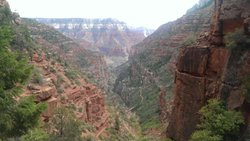 Grand Canyon North Rim Mule Rides -Tour