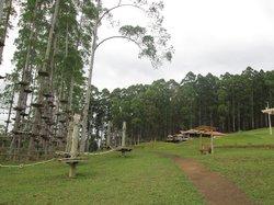 Selva Sassiri