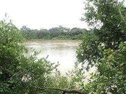 Rio Cuiaba