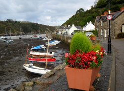 The Ship Inn Lower Fishguard