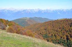 Monte Cesen