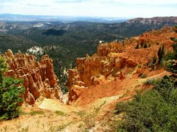 Ponderosa Canyon