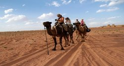 Morocco Safari Travel  Day Tours