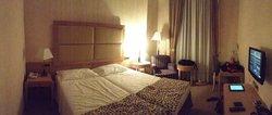 阿索托麗亞酒店