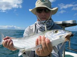 Belize Sport Fishing Charters
