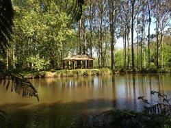 Taitua Arboretum