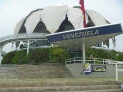 La Flor de Venezuela