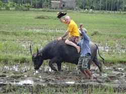 Hoi An Village Experience