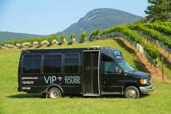 VIP Southern Tours