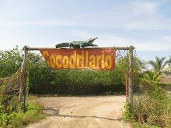"""Santuario de Cocodrilos """"El Cora"""""""