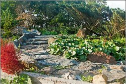 Botanical Garden-Institute
