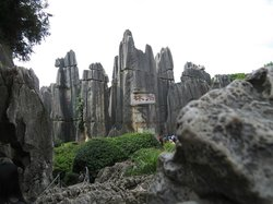 Yunnan Stone Forest Geological Park