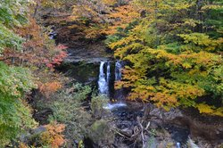 Yachiho Highland Natural Garden