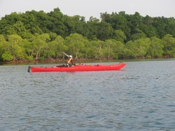 Andaman Kayak Tours