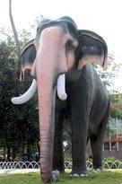 Guruvayoor kesavan elephant