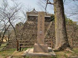 Peninggalan Istana Kameyama