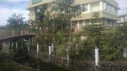Coniferous Resort