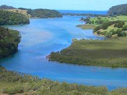 Puhoi River Canoe Hire Ltd Kayak Trips
