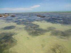Ponta de Pedras Beach