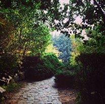 Jamshidieh Stone Garden
