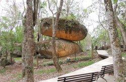 Parque Municipal da Pedra Montada