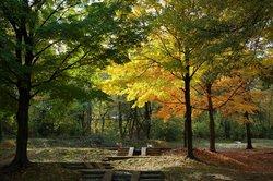Upton Hill Regional Park