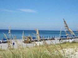 The beach and gulf.
