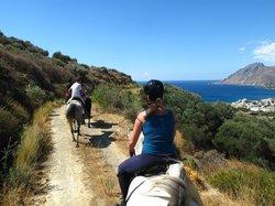 Alianthos Horse Riding