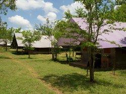 Big Game Camp - Udawalawe