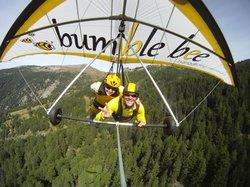 Bumblebee Hanggliding Interlaken