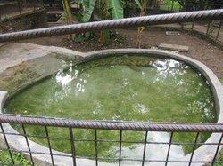 Reptile Park (Parc des Reptiles)