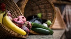 Camphill Holywood Organic Foods