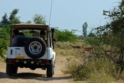 Overlander India - Private Day Tours